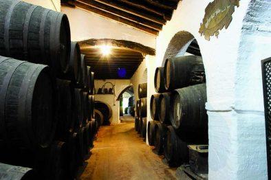 5 charming bodegas en Seville