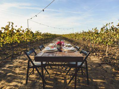 seville-food-wine-tours-pendes-lunch-vinyard